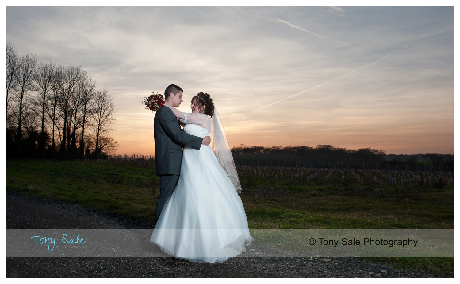 Wedding Photography Baddow Park