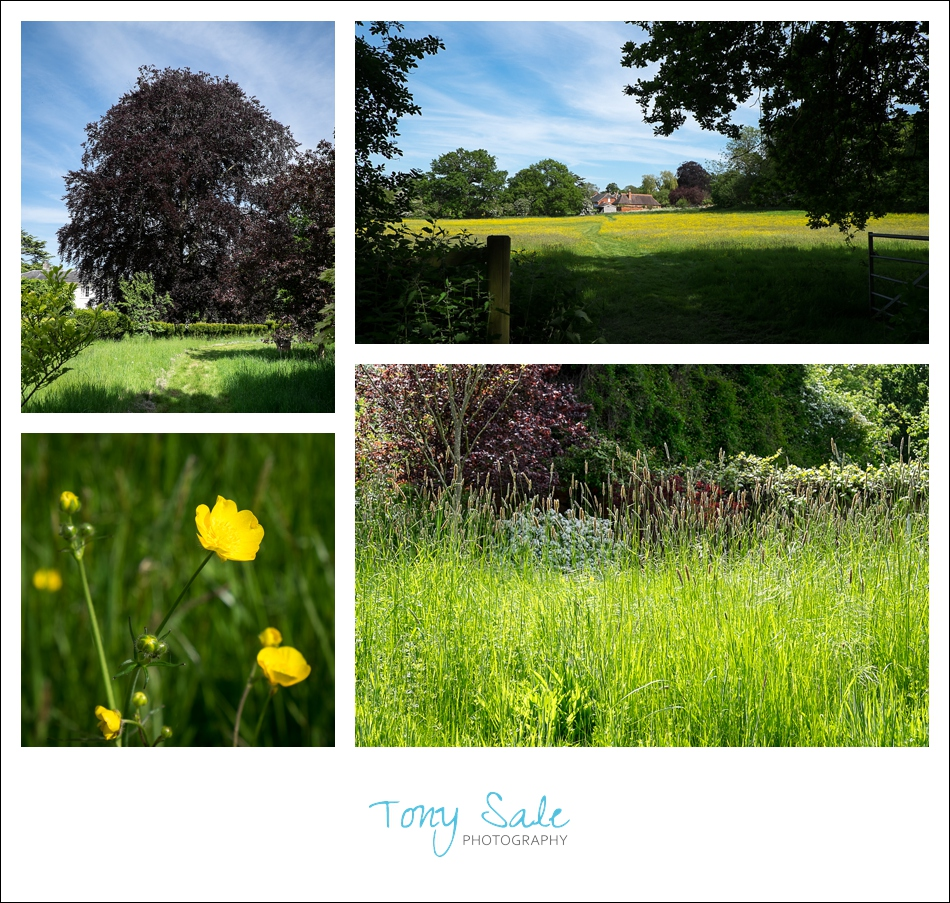 Beautiful Gardens_Tony Sale Photography_002