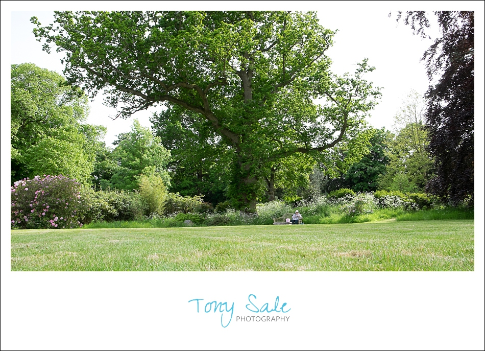 Beautiful Gardens_Tony Sale Photography_007