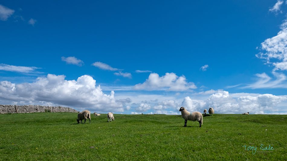 Landscape Photography The Yorkshire Dales – Appletreewick